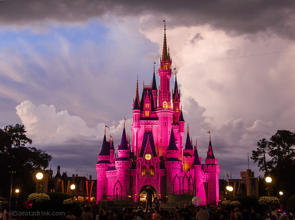img_4964-castle-pink-p